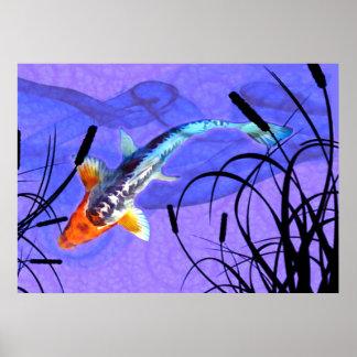 Shusui Koi dans l'étang pourpre avec des Cattails Poster