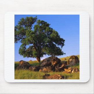 Sierra collines d arbres de Nevada Tapis De Souris