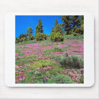 Sierra collines la Californie de printemps de scèn Tapis De Souris