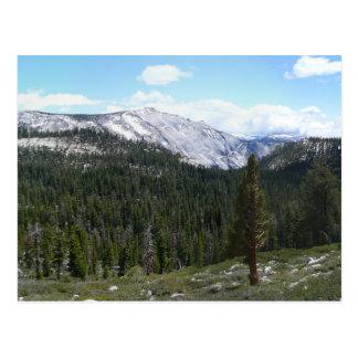 Sierra montagnes de Nevada II de Yosemite Cartes Postales
