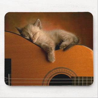 Sieste du chaton sur guitare tapis de souris