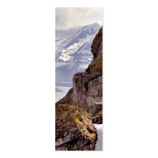 Signet arctique de roche carte de visite petit format