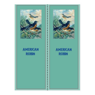 Signets de Robin d'Américain Carte Postale