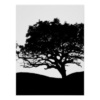 Silhouette d'arbre affiches