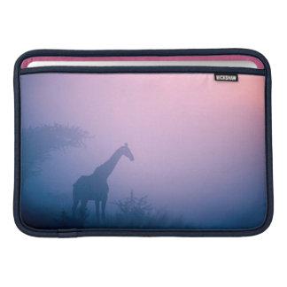 Silhouette de girafe (Giraffa Camelopardalis) Poche Macbook
