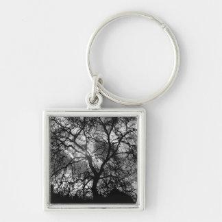 Silhouette dramatique d'arbre porte-clé carré argenté