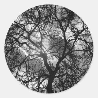 Silhouette dramatique d'arbre sticker rond