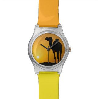 Silhouette d'un chameau sauvage au coucher du sole montres