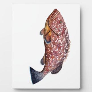 Simple, poisson garopa, chernia impression sur plaque