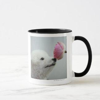 Singapour 9 mug