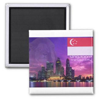 Singapour Magnet Carré