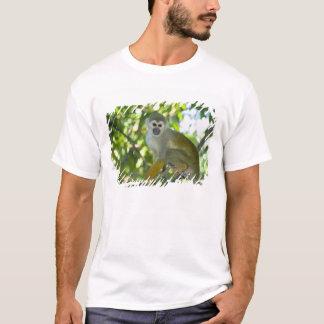 Singe-écureuil commun (sciureus de Saimiri) Rio T-shirt