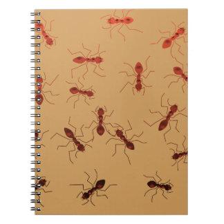 Singeries de fourmi carnet