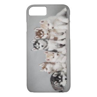 Six chiens de traîneau coque iPhone 7