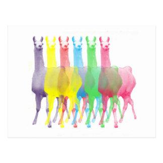six lamas dans six couleurs de lama cartes postales