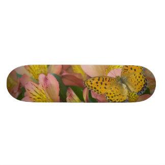 Skateboard 19,7 Cm Photographie de Sammamish Washington du papillon