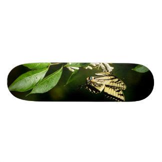 Skateboard 20,6 Cm Planche à roulettes de papillon de machaon de