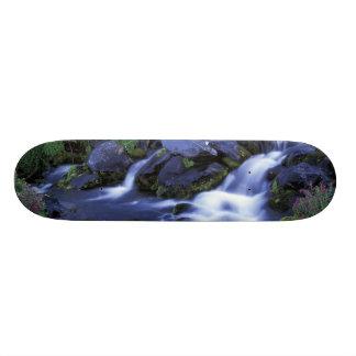 Skateboard 20 Cm L'Amérique du Nord, Etats-Unis, Washington, le
