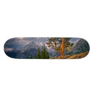Skateboard 20 Cm Les Etats-Unis, Wyoming, Teton grand NP. Le lever