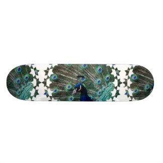 Skateboard 20 Cm Planche à roulettes d'oiseau de paon