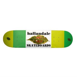 Skateboard 20 Cm Plate-forme de planche à roulettes de Hallandale