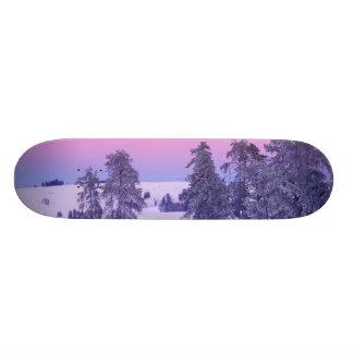 Skateboard 21,6 Cm L'Amérique du Nord, Etats-Unis, Montana,