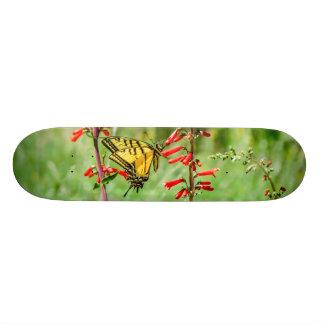 Skateboard 21,6 Cm Papillon et fleurs sauvages de machaon de tigre