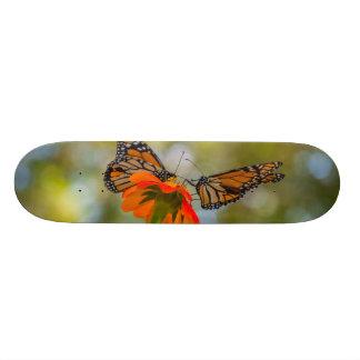 Skateboard 21,6 Cm Papillons de monarque sur des fleurs sauvages
