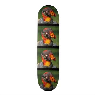 Skateboard Chauve est beau