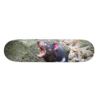 Skateboard Diable tasmanien