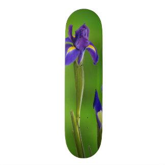 Skateboard Fleurs d'iris