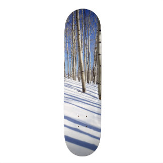 Skateboard Les Etats-Unis, Utah, réserve forestière de Dixie,