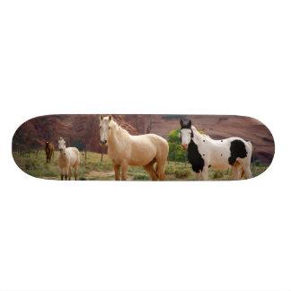 Skateboard Old School 21,6 Cm L'Arizona, réserve indienne de Navajo, Chinle,