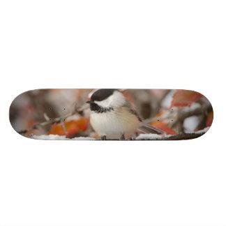Skateboards Personnalisables Chickadee Noir-couvert par adulte dans la neige,