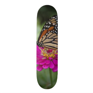 Skateboards Personnalisables Les Etats-Unis, le Massachusetts, Boylston,