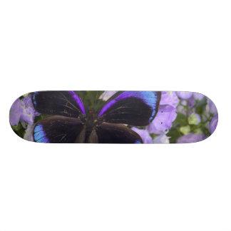 Skateboards Personnalisables Photographie de Sammamish Washington du papillon 2