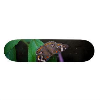 Skateoard Personnalisé Papillon repéré