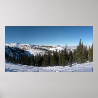 Ski d'arbre poster