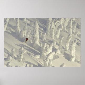 Skieur alpin dans les snowghosts épais à grand posters