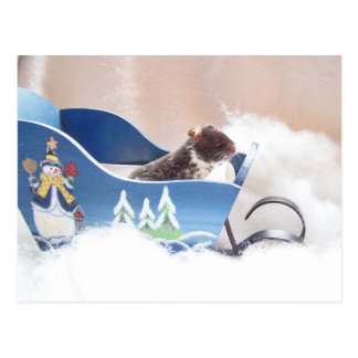 Sledding de Noé de hamster Carte Postale