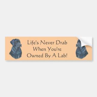 slogan original d'amusement de Labrador de Autocollant De Voiture