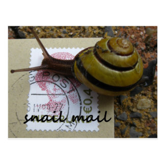 Snail mail carte postale