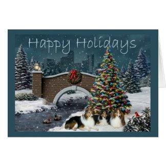 Soirée de carte de Noël de Sheltie