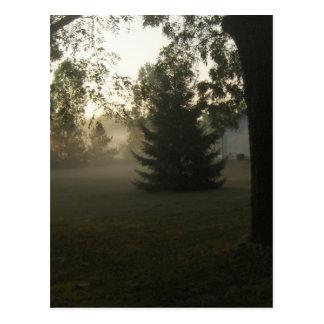 Soleil silencieux cartes postales