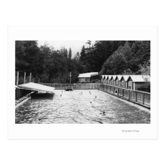 Solénoïde Duc Hot Springs, photographie de piscine Carte Postale