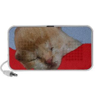 Sommeil mignon de chatons haut-parleur iPhone