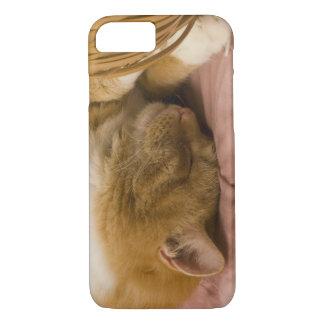Sommeil orange de chat tigré coque iPhone 8/7