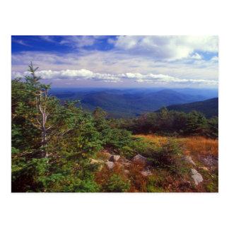 Sommet des montagnes de blanc de Moosilaukee de Carte Postale