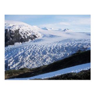 Sortez le glacier en parc national de fjords de carte postale