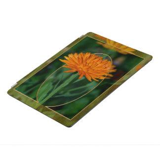 Souci 2 protection iPad pro